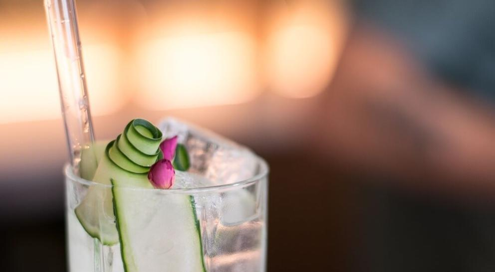 gin and tonic with cucumber garnish